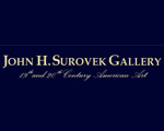 Surovek Gallery